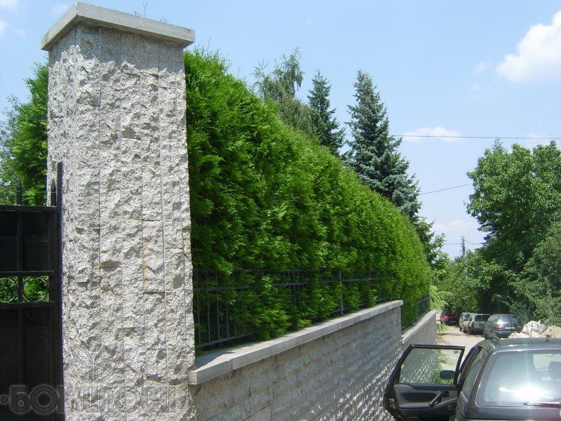 Изпълнител - Градински център Божилови